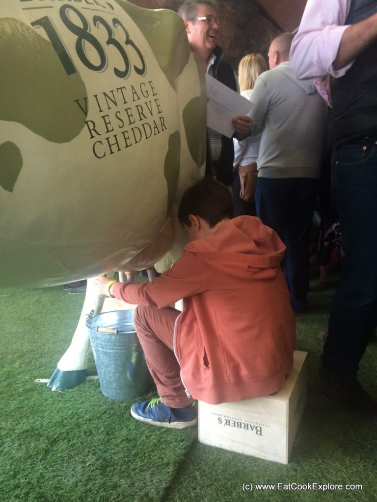 Barbers 1833 cheese Milking the cow