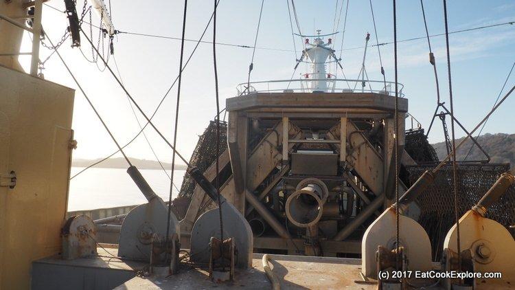 On board the Mare Gratia mussel boat