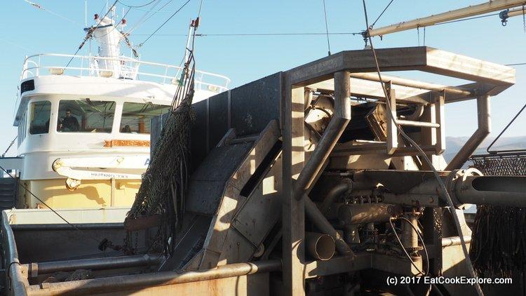 On board the Mare Gratia mussel boat Conveyor Belt