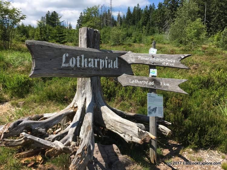 Black Forest Lotharpfad