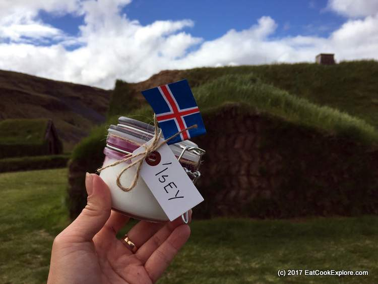 Introducing Isey The Icelandic Skyr #IseySkyr