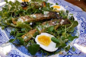 The Almost Nicoise Salad: Pan fried salmon salad
