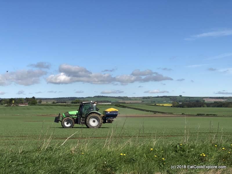 Elie Fife Farms