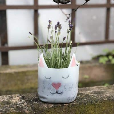 making cute planter from milk bottlles